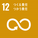 sdg_icon_12